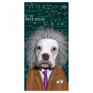 Πετσέτα Θαλάσσης Astro Pets Rock Einstein Dog - 150 x 75 cm